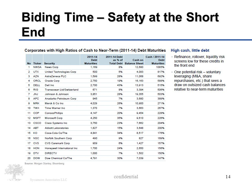 Sycamore Associates LLC Biding Time – Safety at the Short End confidential14