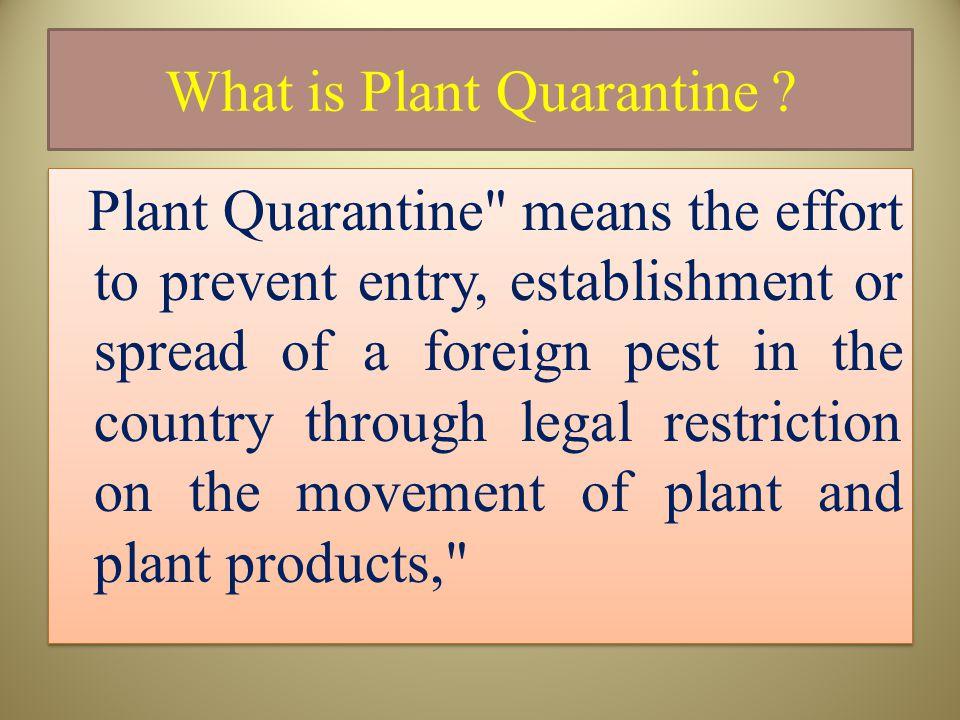 What is Plant Quarantine .