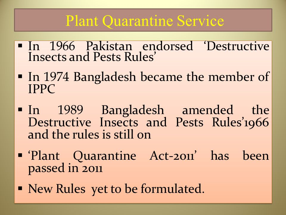 Plant Quarantine Service  In 1966 Pakistan endorsed 'Destructive Insects and Pests Rules'  In 1974 Bangladesh became the member of IPPC  In 1989 Bangladesh amended the Destructive Insects and Pests Rules'1966 and the rules is still on  'Plant Quarantine Act-2011' has been passed in 2011  New Rules yet to be formulated.