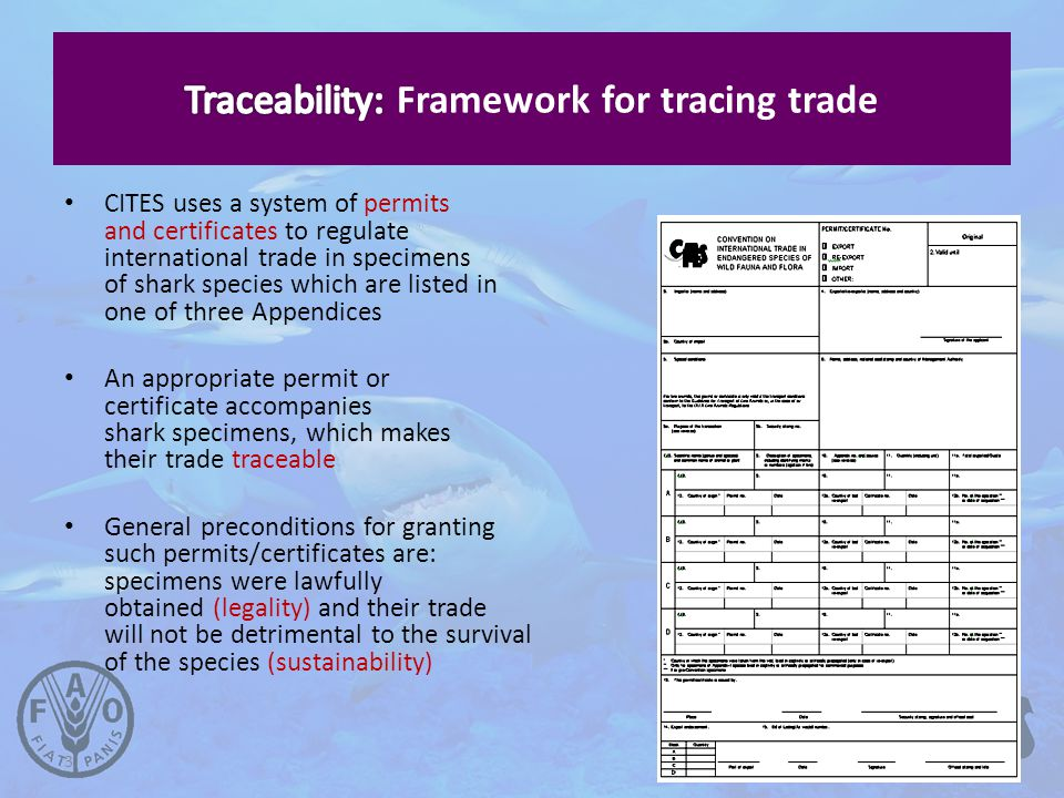 3 CITES uses a system of permits and certificates to regulate international trade in specimens of shark species which are listed in one of three Appendices An appropriate permit or certificate accompanies shark specimens, which makes their trade traceable General preconditions for granting such permits/certificates are: specimens were lawfully obtained (legality) and their trade will not be detrimental to the survival of the species (sustainability)