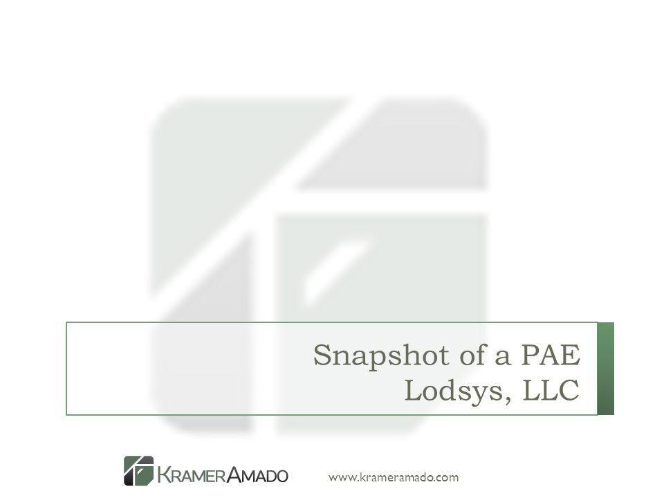 www.krameramado.com Snapshot of a PAE Lodsys, LLC