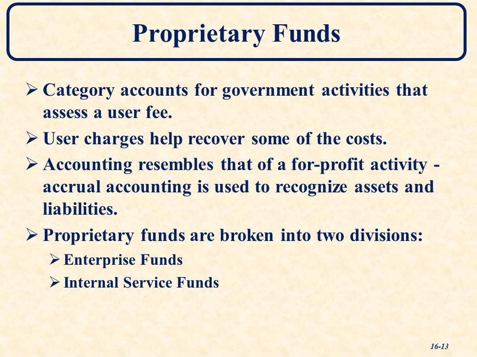 Proprietary Funds  Category accounts for government activities that assess a user fee.