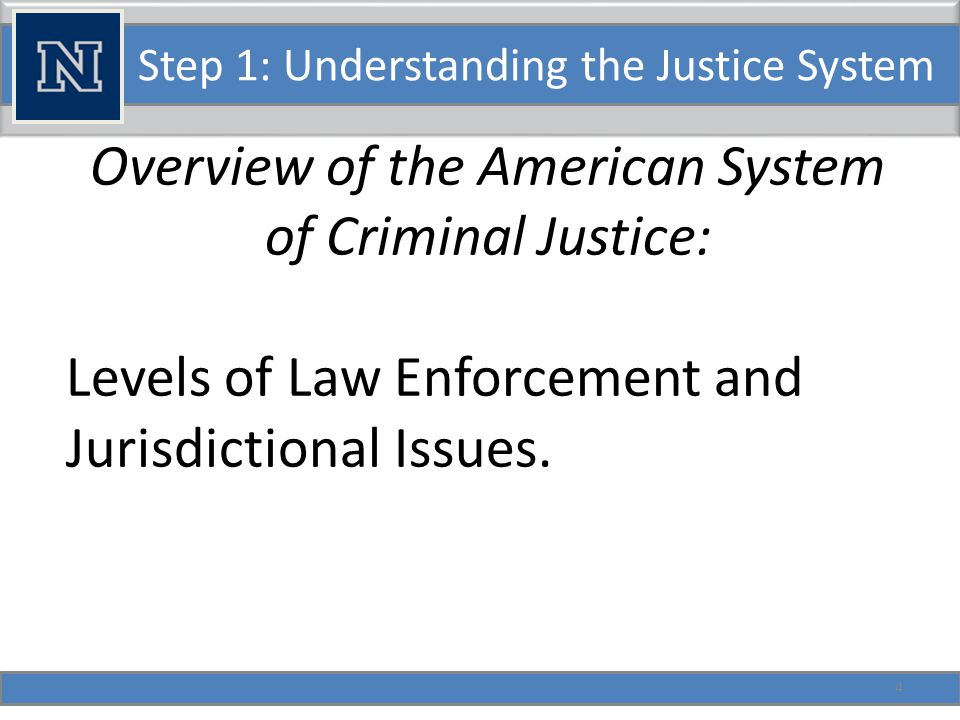 Step 1: Understanding the Justice System Overview of the American System of Criminal Justice: Levels of Law Enforcement and Jurisdictional Issues.