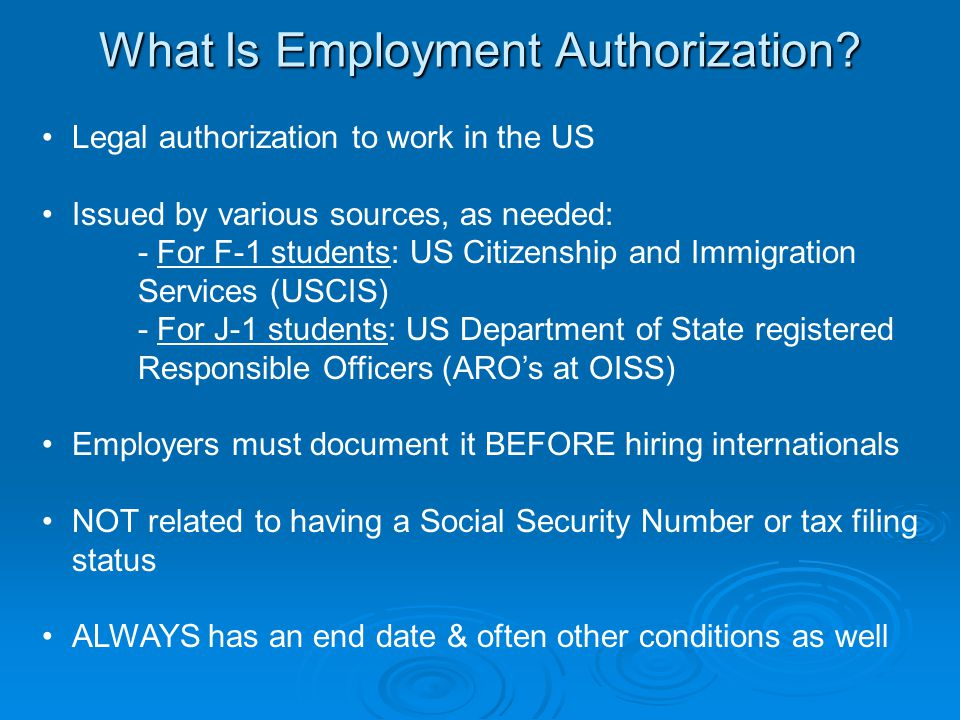 What Is Employment Authorization.