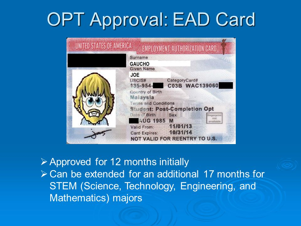 OPT Approval: EAD Card  Approved for 12 months initially  Can be extended for an additional 17 months for STEM (Science, Technology, Engineering, and Mathematics) majors