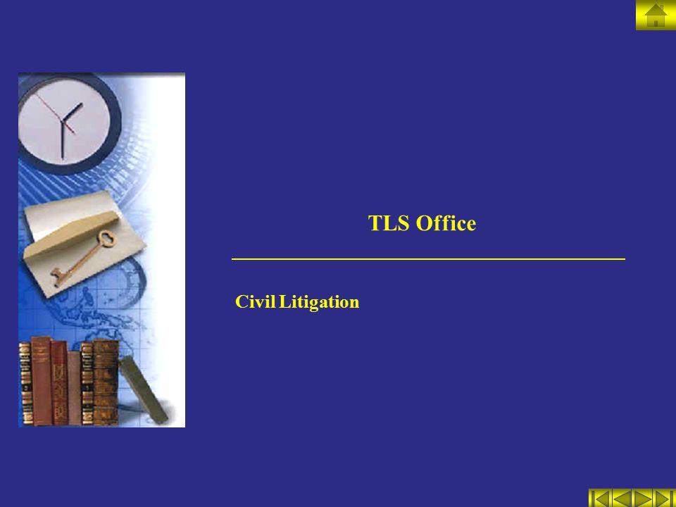 TLS Office Civil Litigation