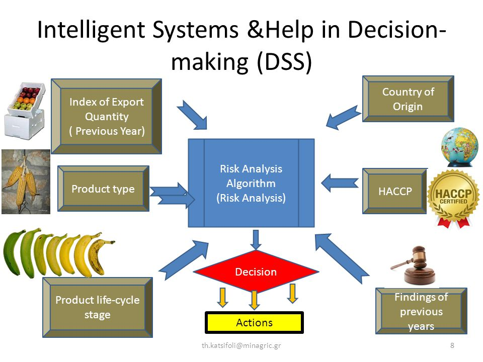 Intelligent Systems &Help in Decision- making (DSS) th.katsifoli@minagric.gr8 Risk Analysis Algorithm (Risk Analysis) Decision HACCP Index of Export Quantity ( Previous Year) Product type Actions Country of Origin Findings of previous years Product life-cycle stage