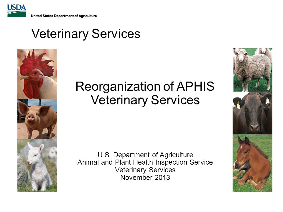 Reorganization of APHIS Veterinary Services U.S.