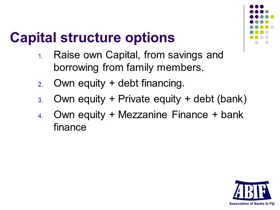 Capital structure options 1. Raise own Capital, from savings and borrowing from family members.