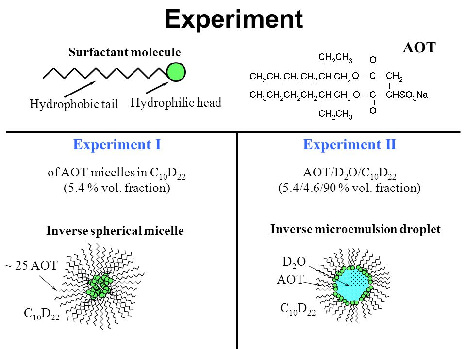 Experiment Hydrophobic tail Hydrophilic head Surfactant molecule AOT Experiment I of AOT micelles in C 10 D 22 (5.4 % vol. fraction) Experiment II AOT
