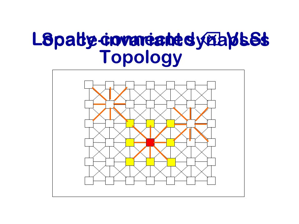 Topology Locally connected  VLSI Space-invariant synapses