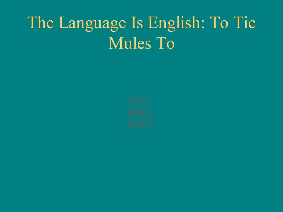 TOTI EMUL ESTO The Language Is English: To Tie Mules To