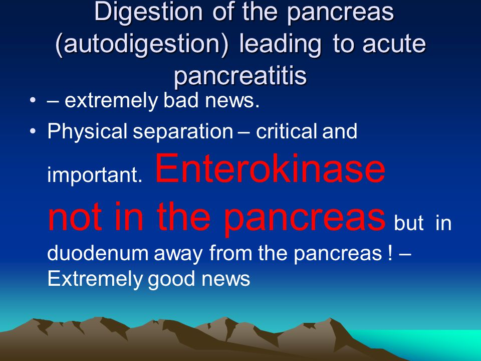 Digestion of the pancreas (autodigestion) leading to acute pancreatitis Digestion of the pancreas (autodigestion) leading to acute pancreatitis – extremely bad news.