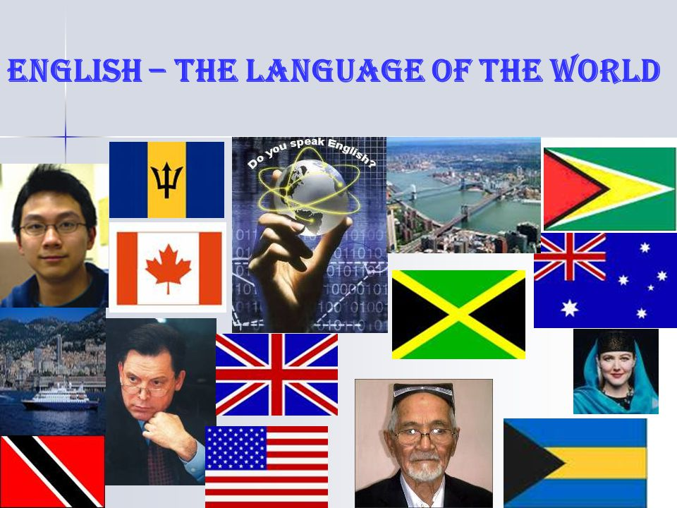 New Zealand Back United States of America Canada Australia Find countries where English is spoken as the fist language.