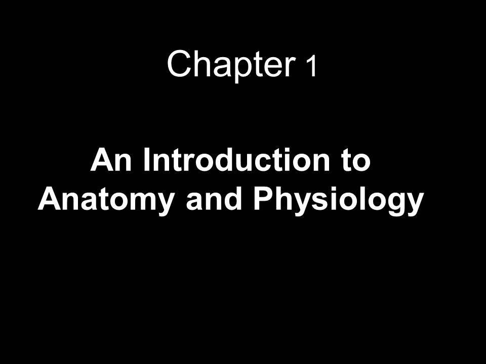 Chapter 1 An Introduction to Anatomy and Physiology