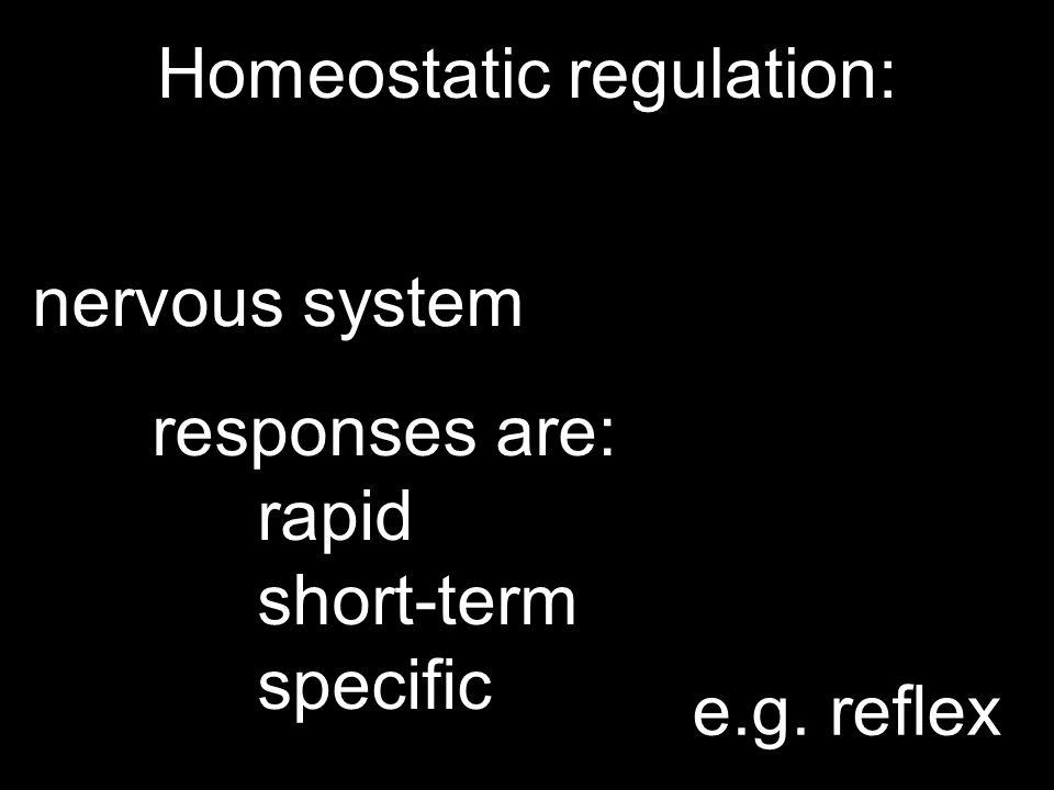 Homeostatic regulation: nervous system responses are: rapid short-term specific e.g. reflex