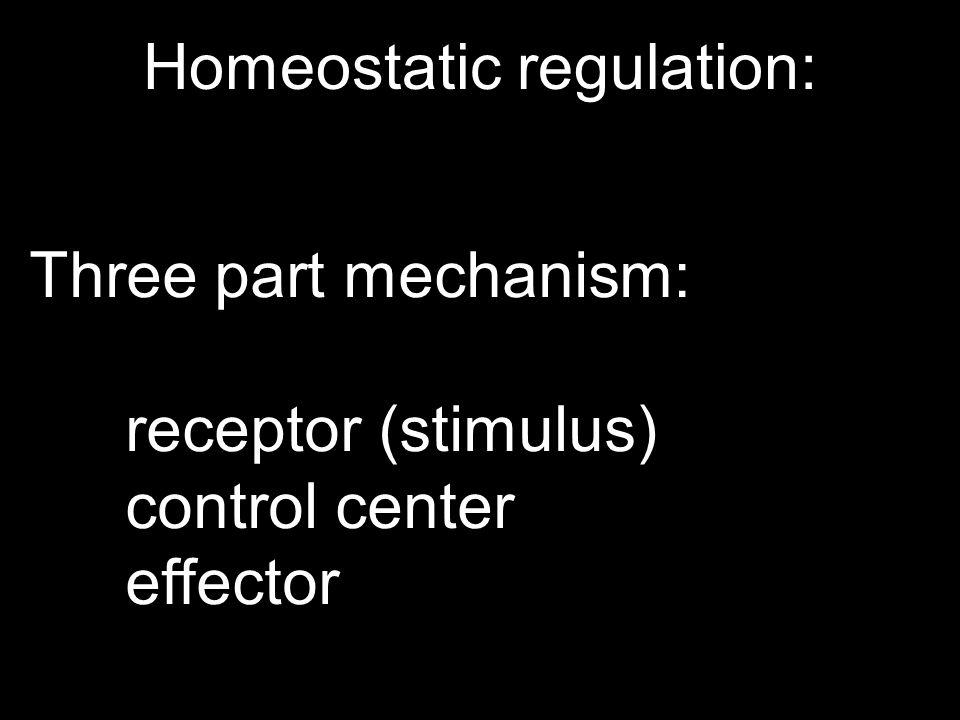Homeostatic regulation: Three part mechanism: receptor (stimulus) control center effector