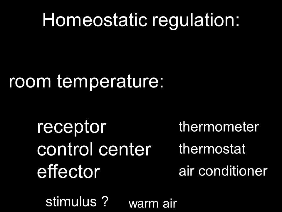 Homeostatic regulation: room temperature: receptor control center effector thermometer thermostat air conditioner stimulus .