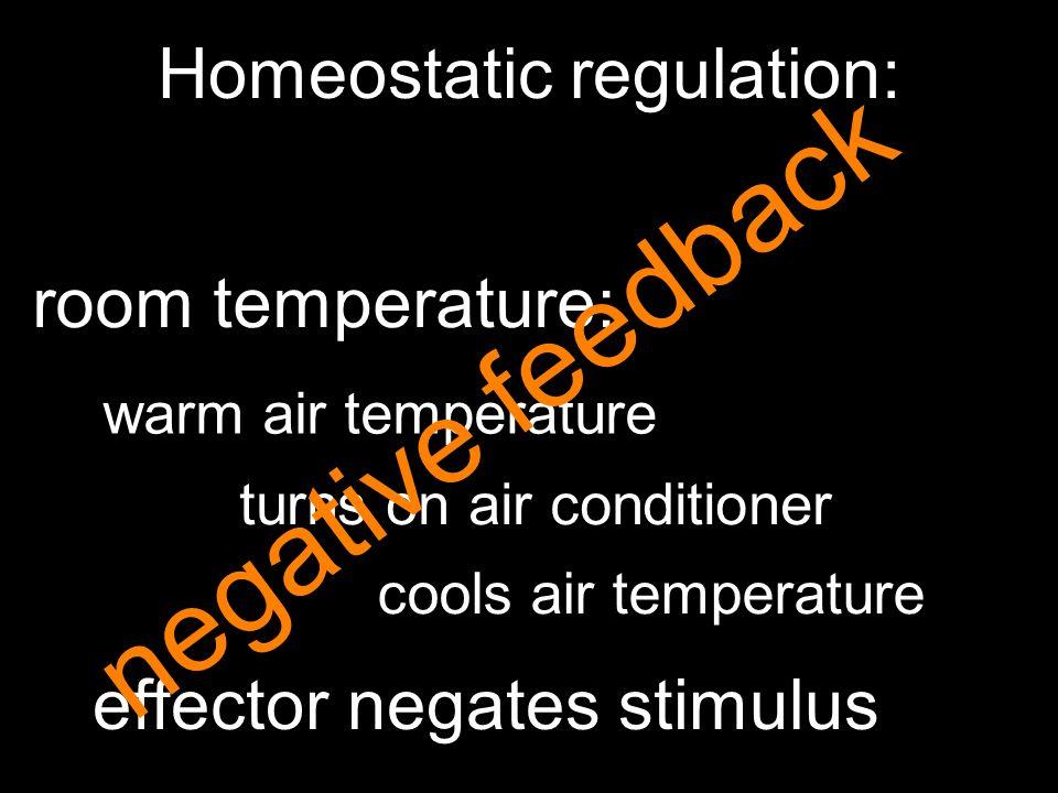 Homeostatic regulation: room temperature: warm air temperature turns on air conditioner cools air temperature effector negates stimulus negative feedb