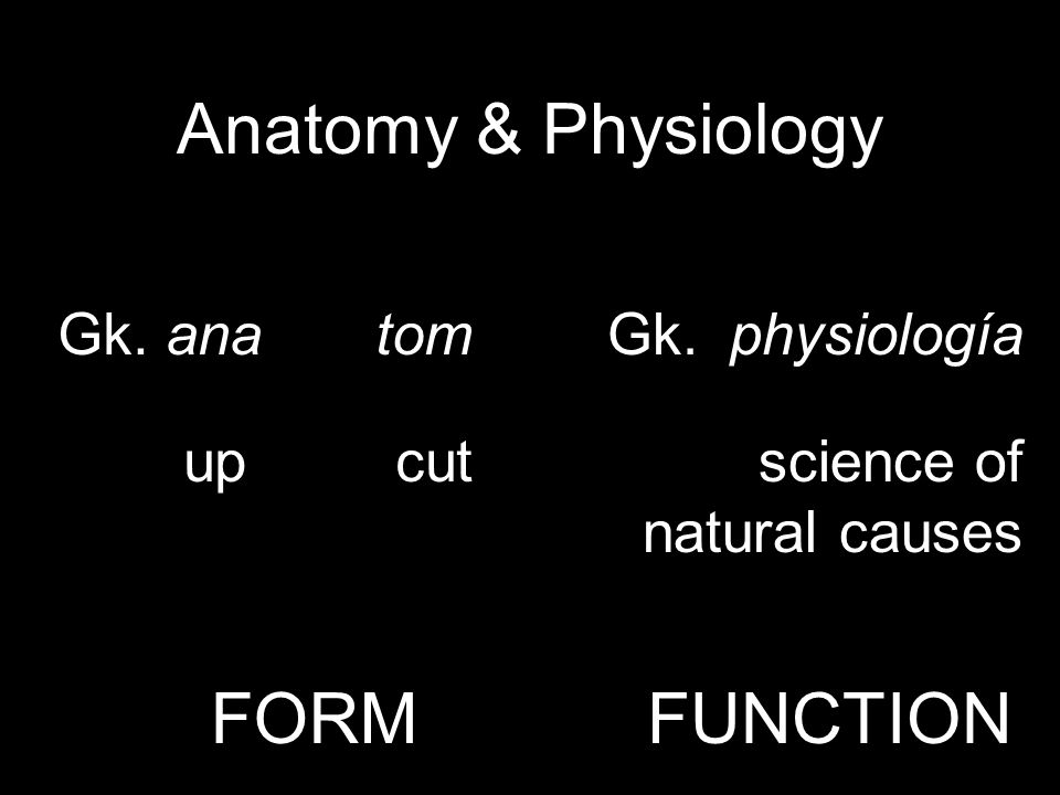 Anatomy & Physiology Gk. anatom upcut Gk. physiología science of natural causes FORMFUNCTION