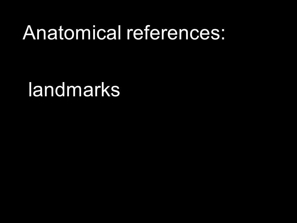 Anatomical references: landmarks