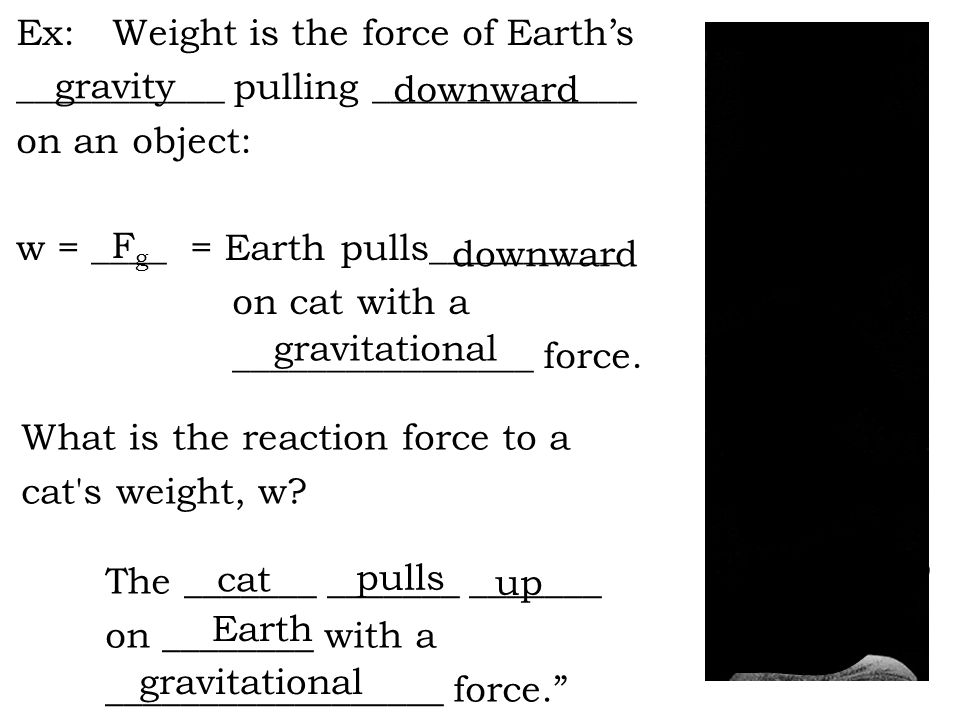 Ex: Weight is the force of Earth's ___________ pulling ______________ on an object: w = ____ = Earth pulls__________ on cat with a ________________ force.