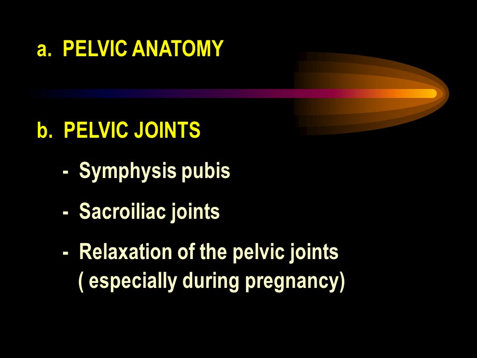 a. PELVIC ANATOMY b. PELVIC JOINTS - Symphysis pubis - Sacroiliac joints - Relaxation of the pelvic joints ( especially during pregnancy)