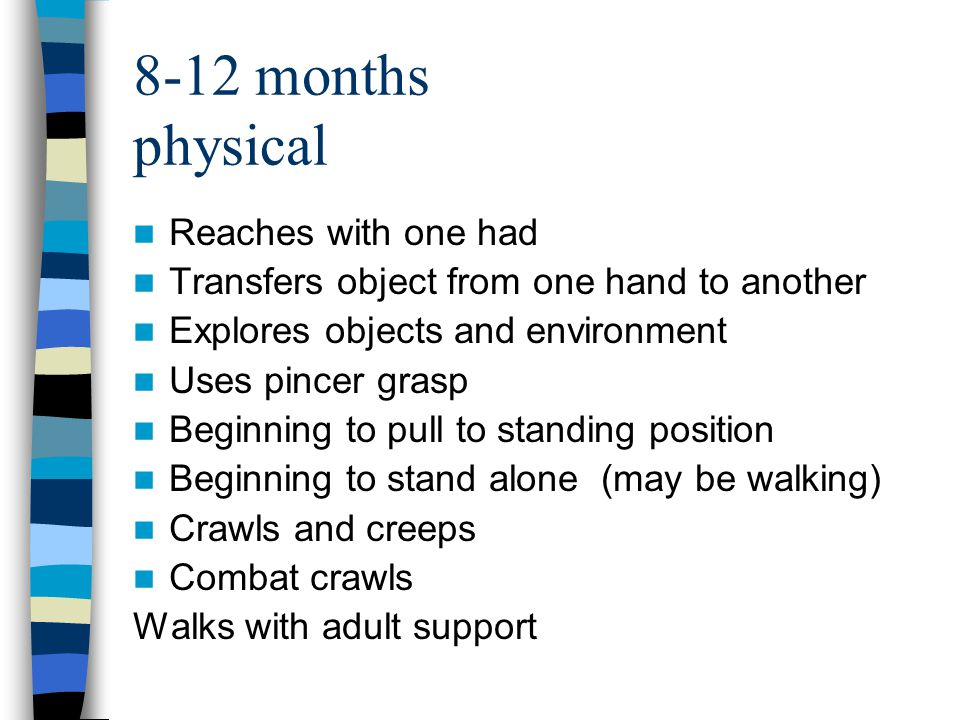 8-12 months physical Reaches with one had Transfers object from one hand to another Explores objects and environment Uses pincer grasp Beginning to pull to standing position Beginning to stand alone (may be walking) Crawls and creeps Combat crawls Walks with adult support