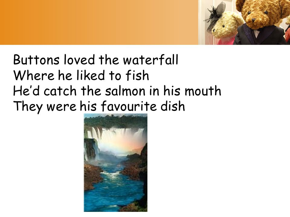Buttons loved the waterfall Where he liked to fish He'd catch the salmon in his mouth They were his favourite dish