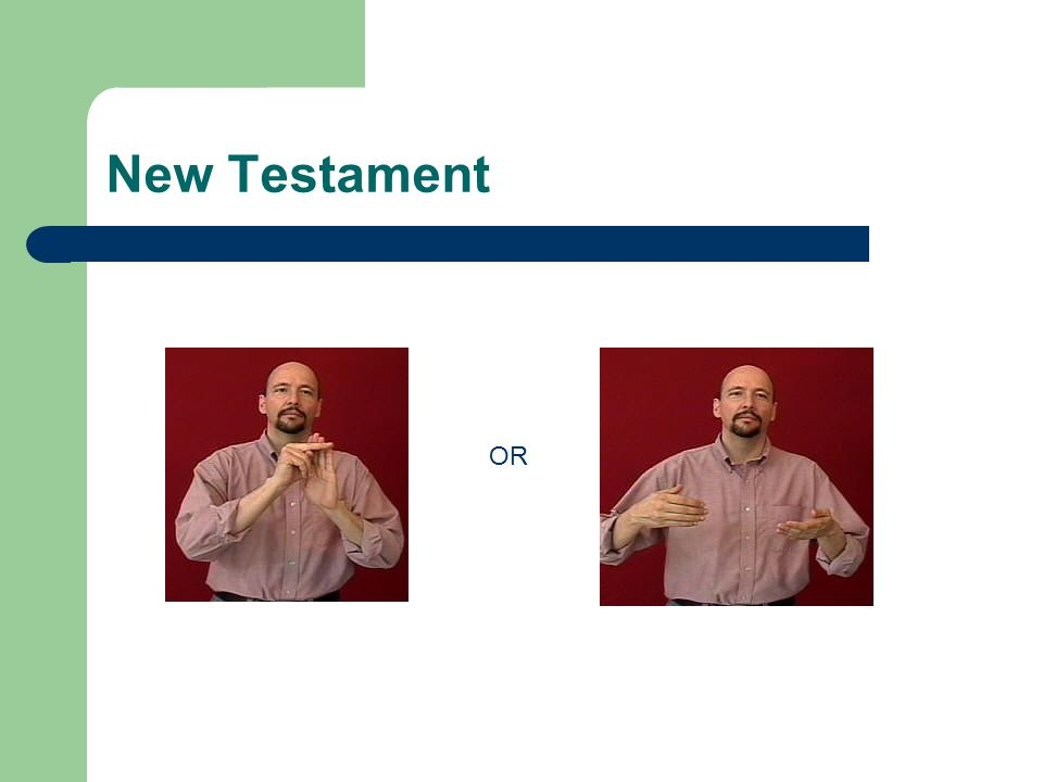 New Testament OR