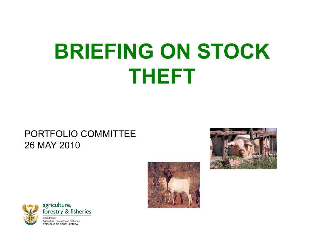 BRIEFING ON STOCK THEFT PORTFOLIO COMMITTEE 26 MAY 2010