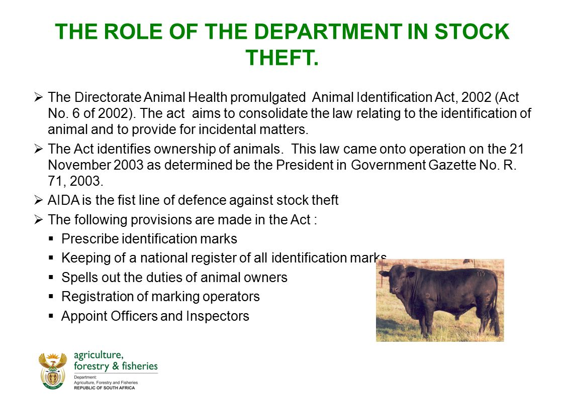 THE ROLE OF THE DEPARTMENT IN STOCK THEFT.