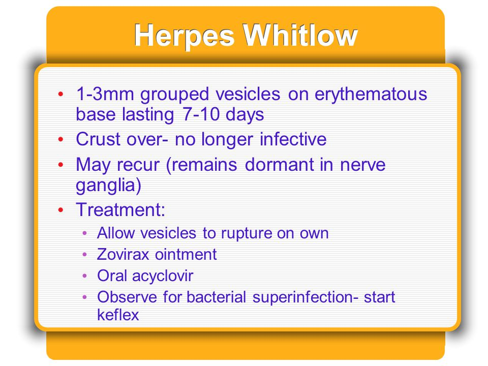 Herpes Whitlow 1-3mm grouped vesicles on erythematous base lasting 7-10 days Crust over- no longer infective May recur (remains dormant in nerve gangl