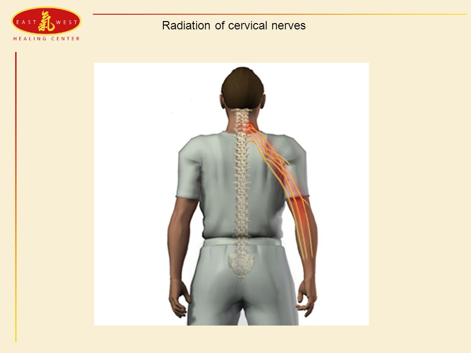 Radiation of cervical nerves