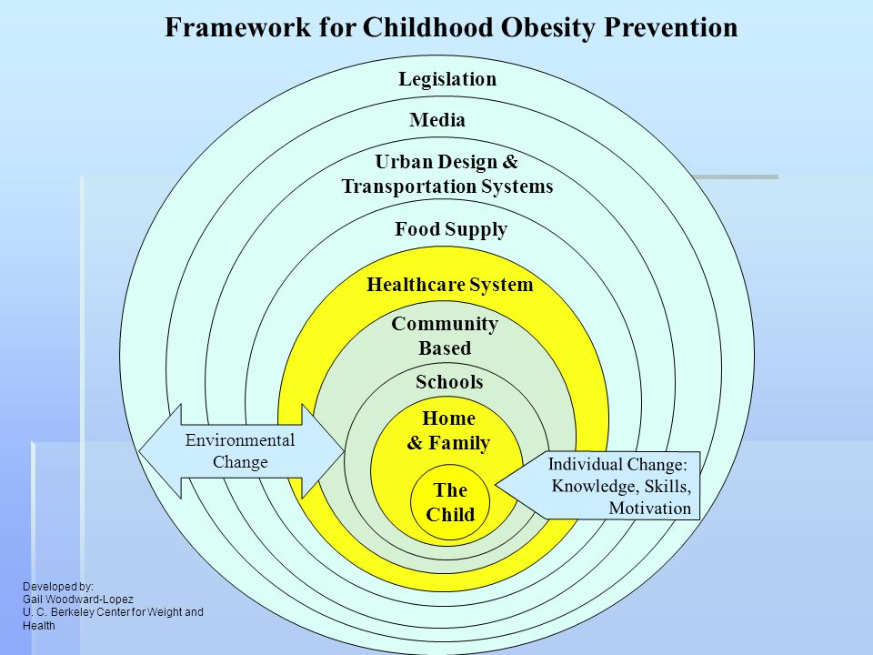 Food Supply Urban Design & Transportation Systems Media Legislation Framework for Childhood Obesity Prevention Environmental Change Schools Community Based Healthcare System The Child Home & Family Individual Change: Knowledge, Skills, Motivation Developed by: Gail Woodward-Lopez U.