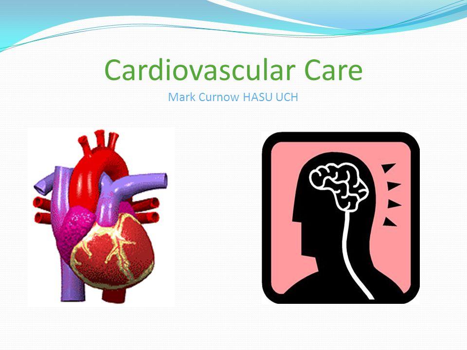 Cardiovascular Care Mark Curnow HASU UCH