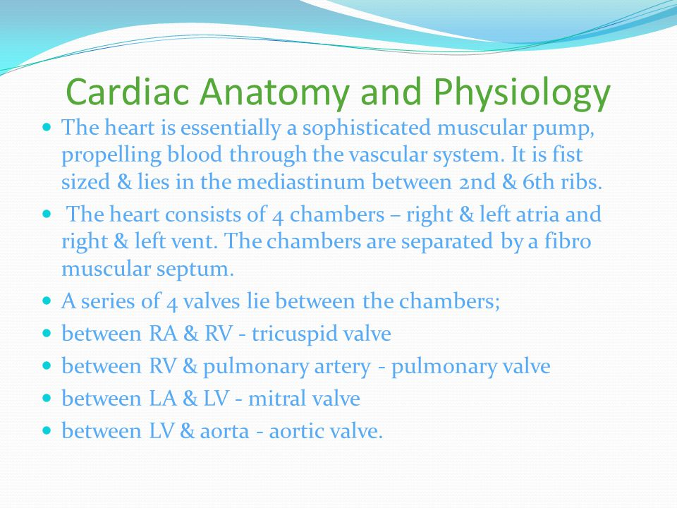 Cardiac Anatomy and Physiology The heart is essentially a sophisticated muscular pump, propelling blood through the vascular system.
