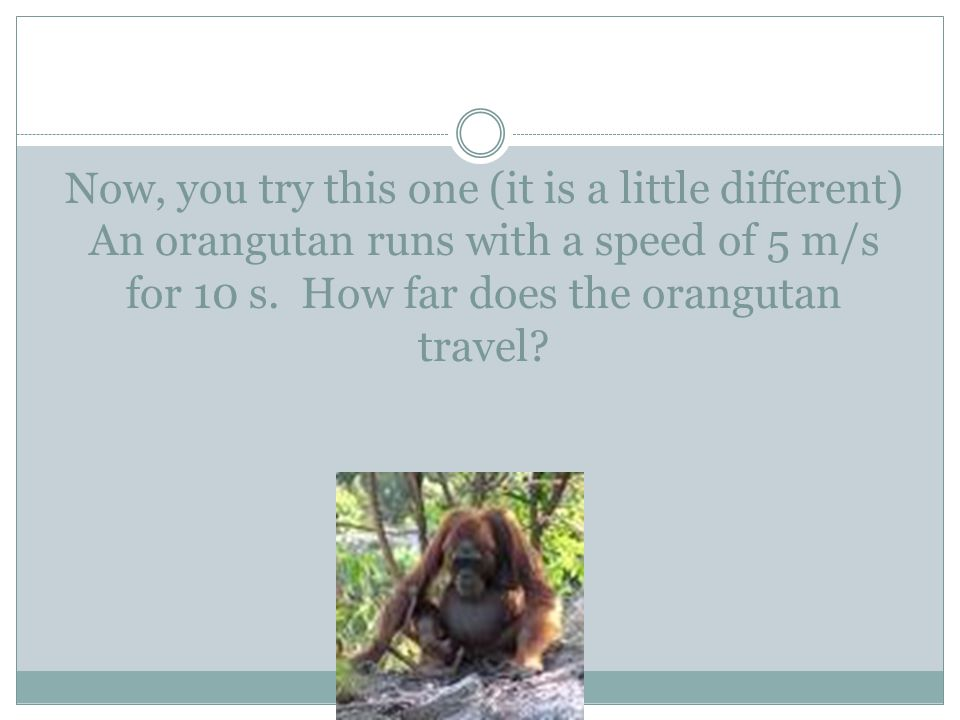 Now, you try this one (it is a little different) An orangutan runs with a speed of 5 m/s for 10 s. How far does the orangutan travel?