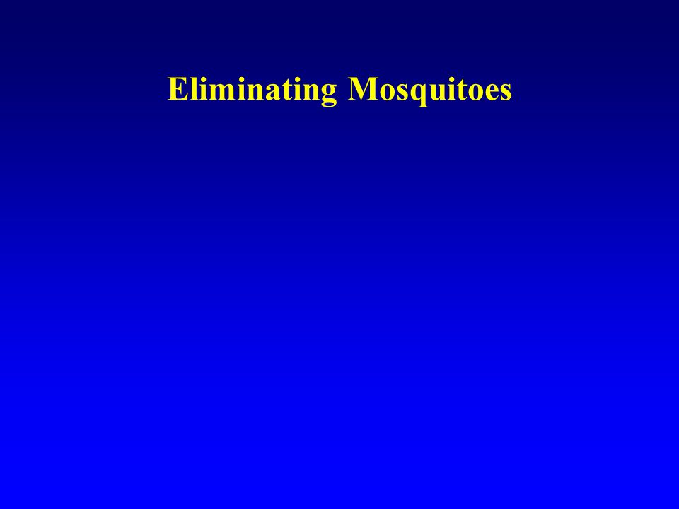 Eliminating Mosquitoes