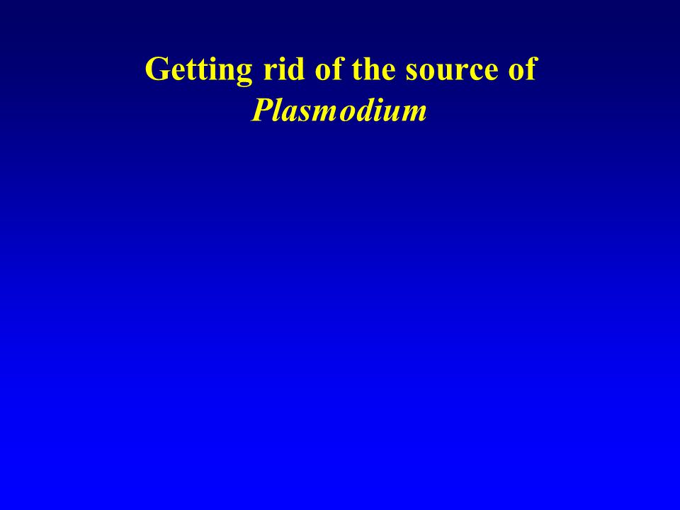 Getting rid of the source of Plasmodium