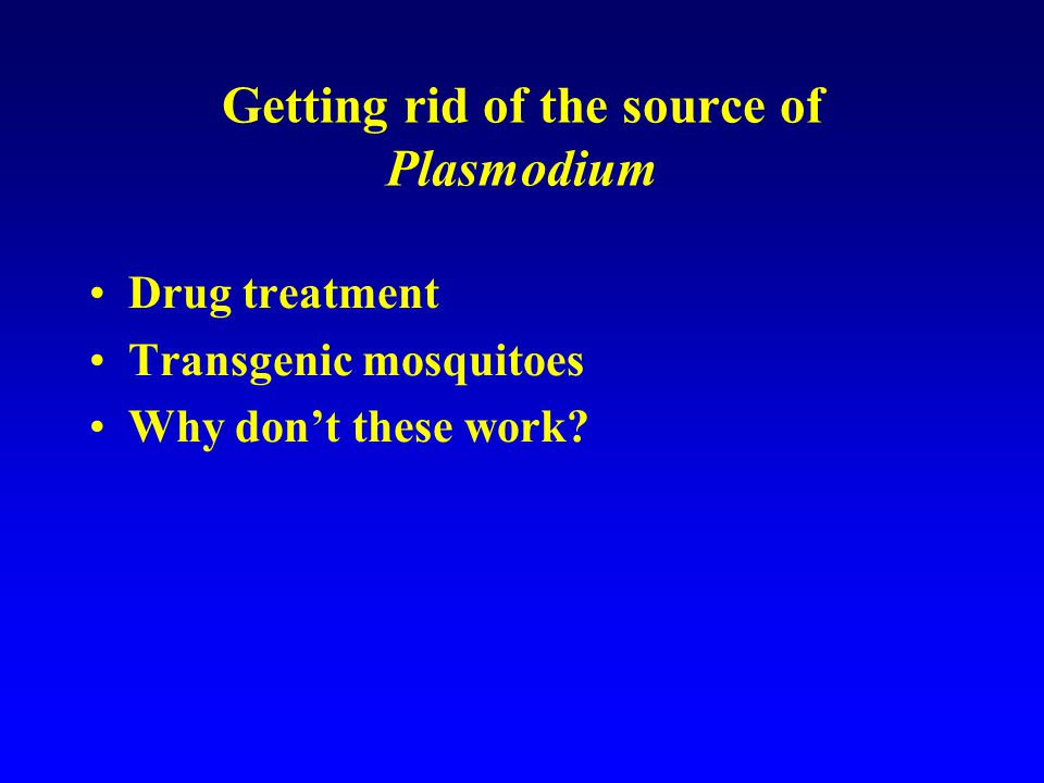 Getting rid of the source of Plasmodium Drug treatment Transgenic mosquitoes Why don't these work?