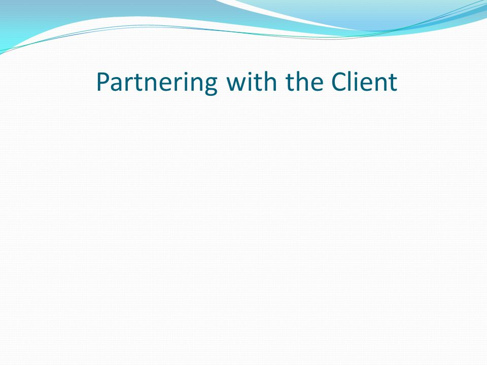 Partnering with the Client