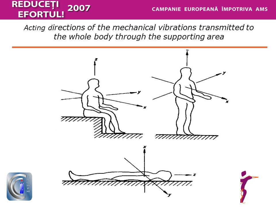 Acting d irections of the mechanical vibrations transmitted to the whole body through the supporting area