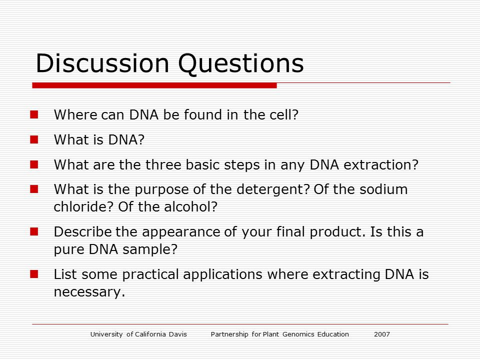 University of California Davis Partnership for Plant Genomics Education 2007 Discussion Questions Where can DNA be found in the cell? What is DNA? Wha
