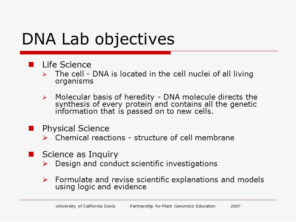 University of California Davis Partnership for Plant Genomics Education 2007 DNA Lab objectives Life Science  The cell - DNA is located in the cell nuclei of all living organisms  Molecular basis of heredity - DNA molecule directs the synthesis of every protein and contains all the genetic information that is passed on to new cells.