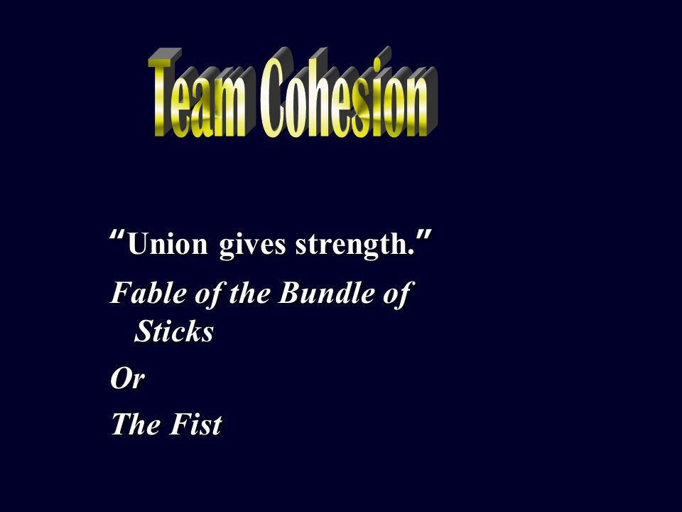 Team Cohesion Team Cohesion Is it necessary for sports success.