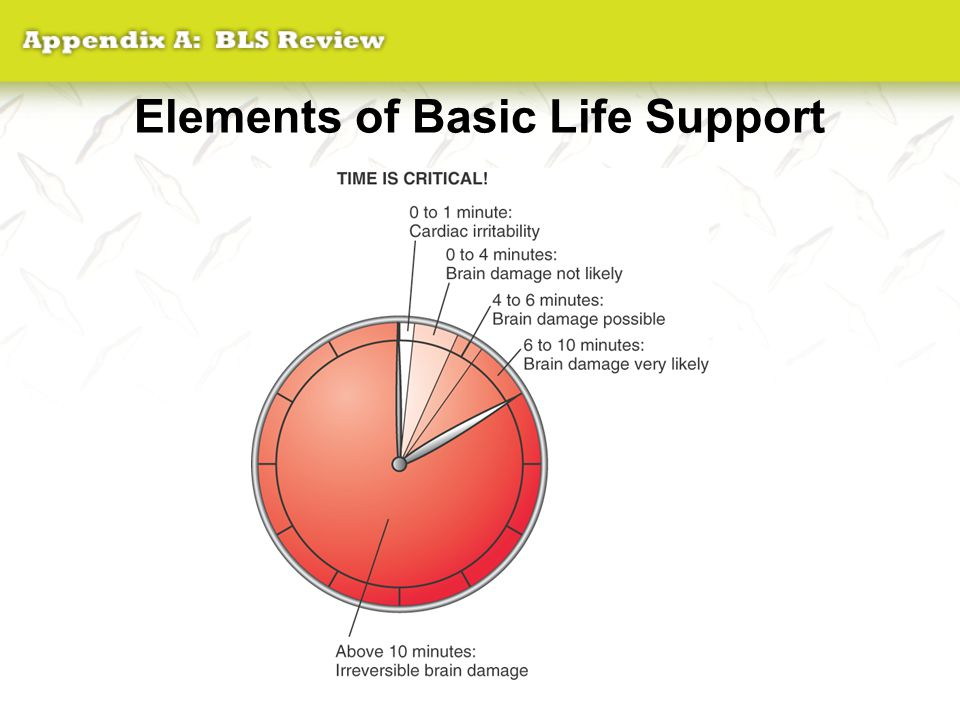 Elements of Basic Life Support