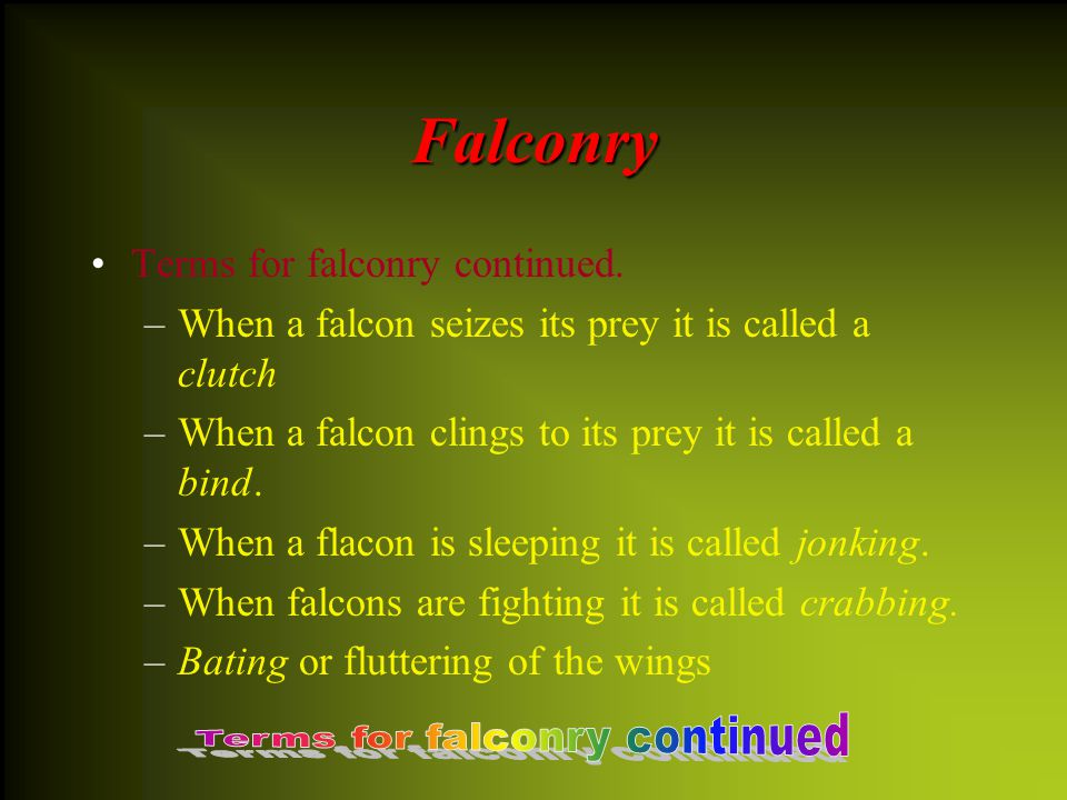 Falconry The following are some terms for falconry. –A–An aerie is a falcon's nest –M–Mewing is when a falcon is molting –A–After a falcon molts it is