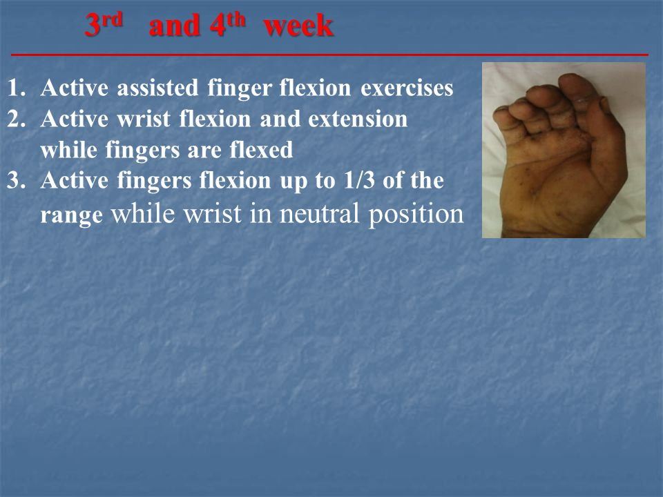 1.Active assisted finger flexion exercises 2.Active wrist flexion and extension while fingers are flexed 3.Active fingers flexion up to 1/3 of the range while wrist in neutral position 3 rd and 4 th week