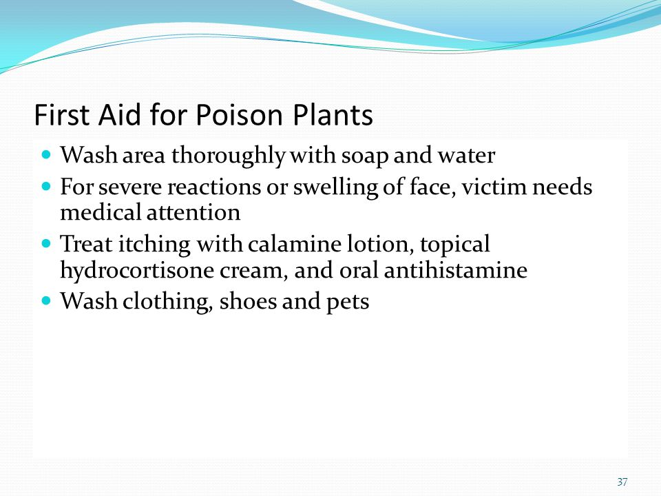 37 First Aid for Poison Plants Wash area thoroughly with soap and water For severe reactions or swelling of face, victim needs medical attention Treat itching with calamine lotion, topical hydrocortisone cream, and oral antihistamine Wash clothing, shoes and pets